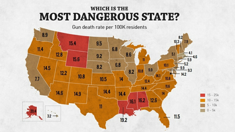 Principles Of Mapping - Gun deaths us map image